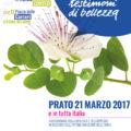A Prato la manifestazione regionale di Libera e Avviso Pubblico per ricordare le vittime innocenti delle mafie